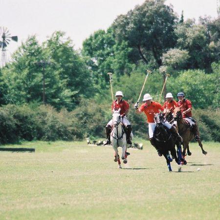 FIP Argentina 2004